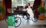 mariage-attelage-de-la-vie-3