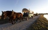activites_touristiques_caleche_marais_aout2010-1955
